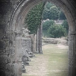 abbaye-stevroult-ofildeleau